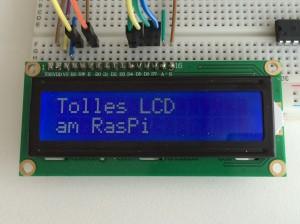 LCD10